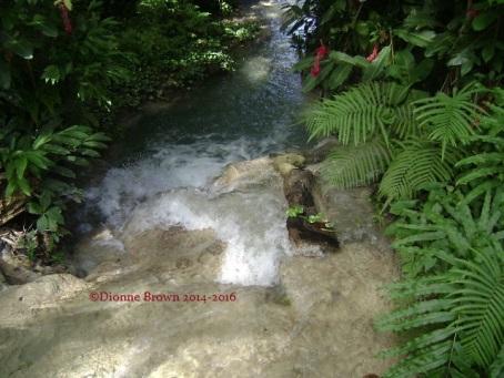 Turtle River Falls, Ocho Rios