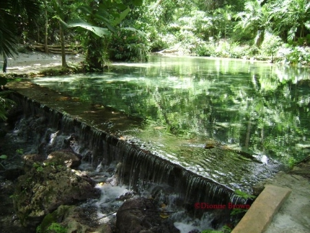 Can you tell where the water ends and the trees begin? Pristine waters meander through the rainforest of Mystic Mountain, Ocho Rios, St. Ann.