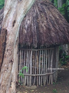 Replica of a Taino hut built in the 1970s which has stood the test of hurricanes and other elements.