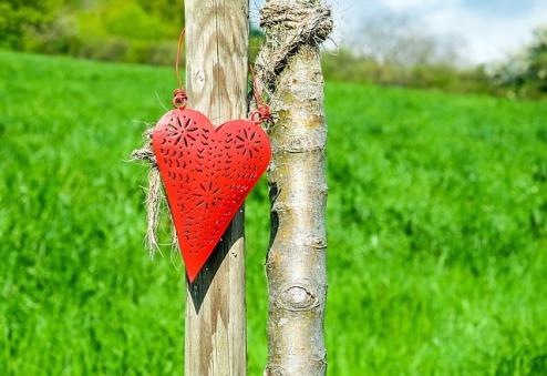 heart-1388798_640
